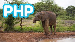 【PHP8を試してみた!】PHP8の新機能まとめ